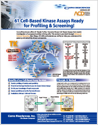 61 Cell-Based Kinase Assays Ready for Profiling & Screening!