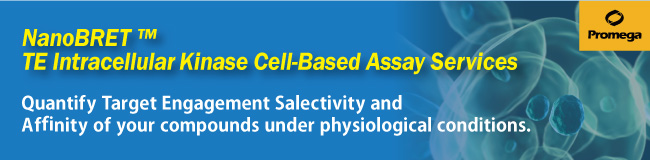 NanoBRET™ TE Intracellular Kinase Cell-Based Assay Services